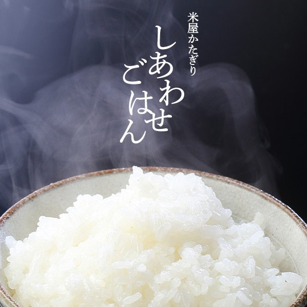 お米 米10kg 5kg×2 新米 白米 送料無料 ポイント 新潟産 コシヒカリ こしひかり 令和3年産 2021 あすつく対応|komeyakatagiri|07