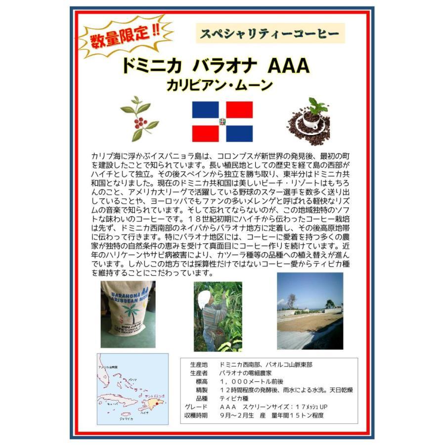 ドミニカ・バラオナ・AAA・カリビアンムーン 100g|konokacafe