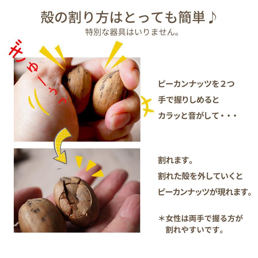 ピーカンナッツ 殻付き 生 200g ナッツ 日本初輸入 オイル不使用 無塩 ピーカンパイ 健康 くるみ おつまみ 製パン  お中元 おやつ クルミ科 konomimi 05