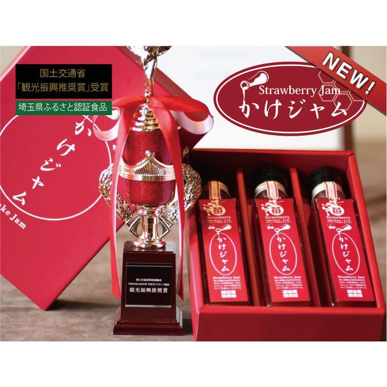 ギフト 贈り物★苺のかけジャムプレーン3本セット(195g×3本)|koshigaya-brand