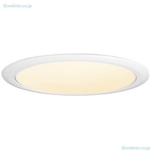 岩崎電気照明器具 岩崎電気照明器具 EDL90015W/LSAZ9 オプション