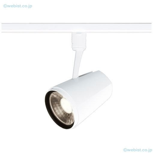 岩崎電気照明器具 ESP15100W/WWSAN1 オプション