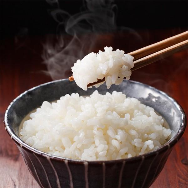 無洗米 5キロ 無洗米5kg 新潟県産 こしいぶき5kg (5kg×1袋) 5kg 無洗米 5キロ 農家直送 こしいぶき 5キロ 令和2年産 美味しいお米|kosihikari|05