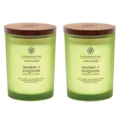 Chesapeake Bay キャンドル マインド&ボディ コーヒー テーブル 香り付きキャンドル Medium (2-Pack) グリーン PT4 kotokoto-shop