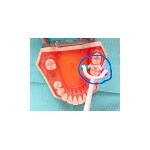 未来の歯ブラシ・歯美ING(ハミング)|koubesuiso|03
