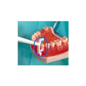 未来の歯ブラシ・歯美ING(ハミング)|koubesuiso|04