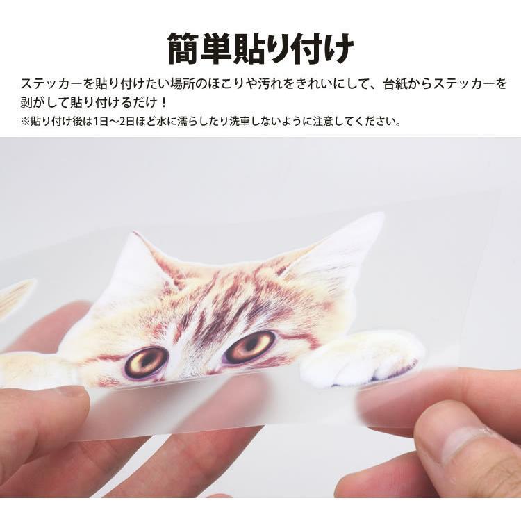 動物 カーステッカー アニマル 犬 猫 かわいい ドレスアップ 車 バイク カー用品 ステッカー|koyokoma|03