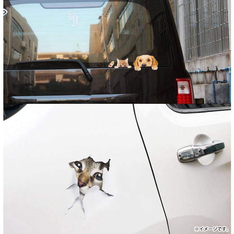 動物 カーステッカー アニマル 犬 猫 かわいい ドレスアップ 車 バイク カー用品 ステッカー|koyokoma|04
