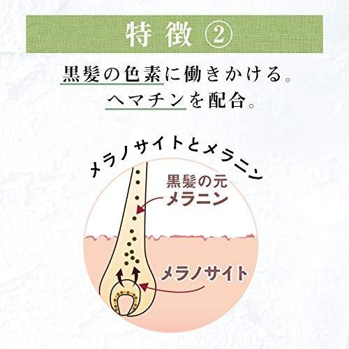 haru(ハル) haru kurokamiスカルプ 柑橘系 単品 400mL kr-store 06