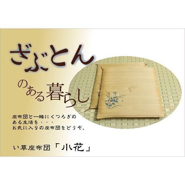 純国産 捺染返し い草座布団 小花 5枚組 ベージュ 55×55cm×5P