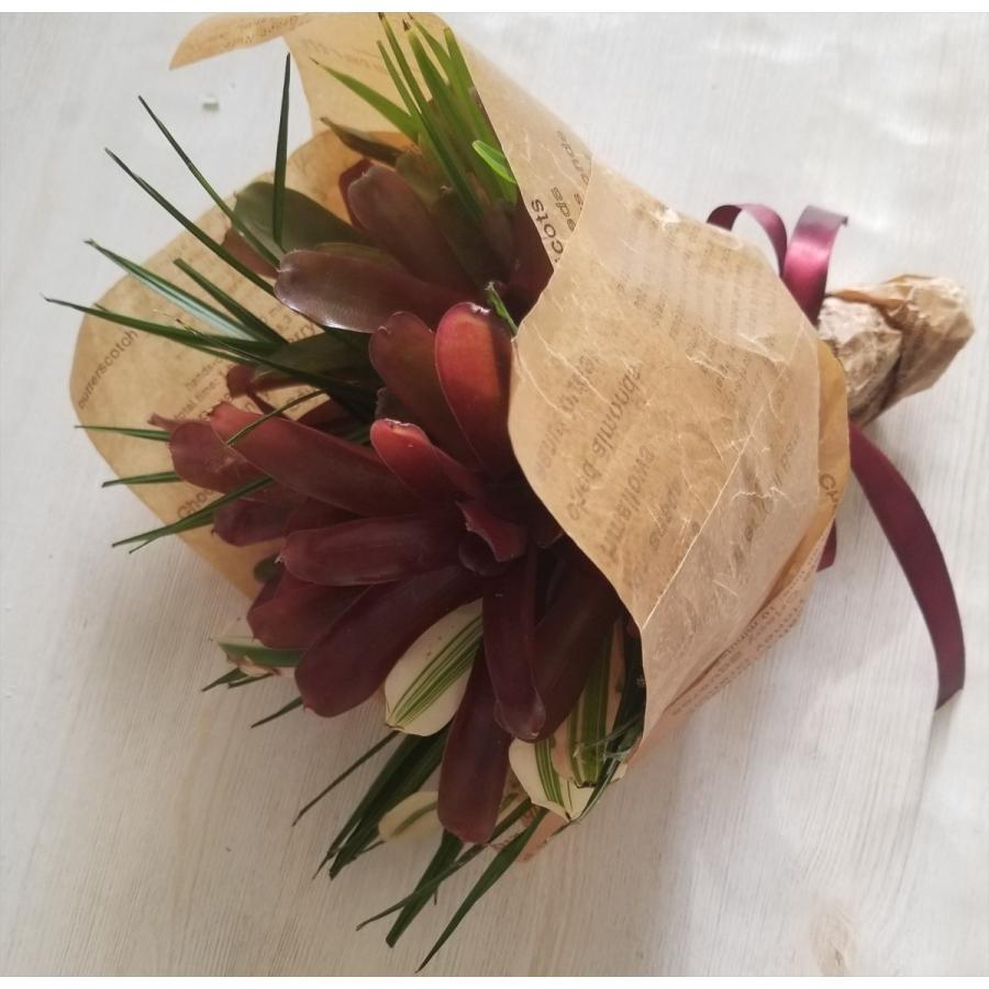 *ネオレゲリアの2度楽しめるブーケ*観葉植物としてずっと飾れるネオレゲリア kugelfg 03