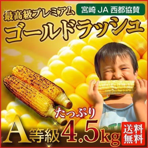 とうもろこし 生とうもろこし 早割 送料無料 宮崎産ゴールドラッシュ 宮崎県JA西都協賛 約4.5kg(11〜15本) 産地直送 新鮮 日本最速出荷 Y蔵|kuishinboucom