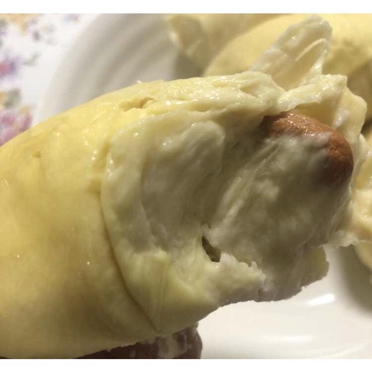 ドリアン ベトナム産 モントン種 1.5kg ~ 2kg 1玉|kukuhaha|03
