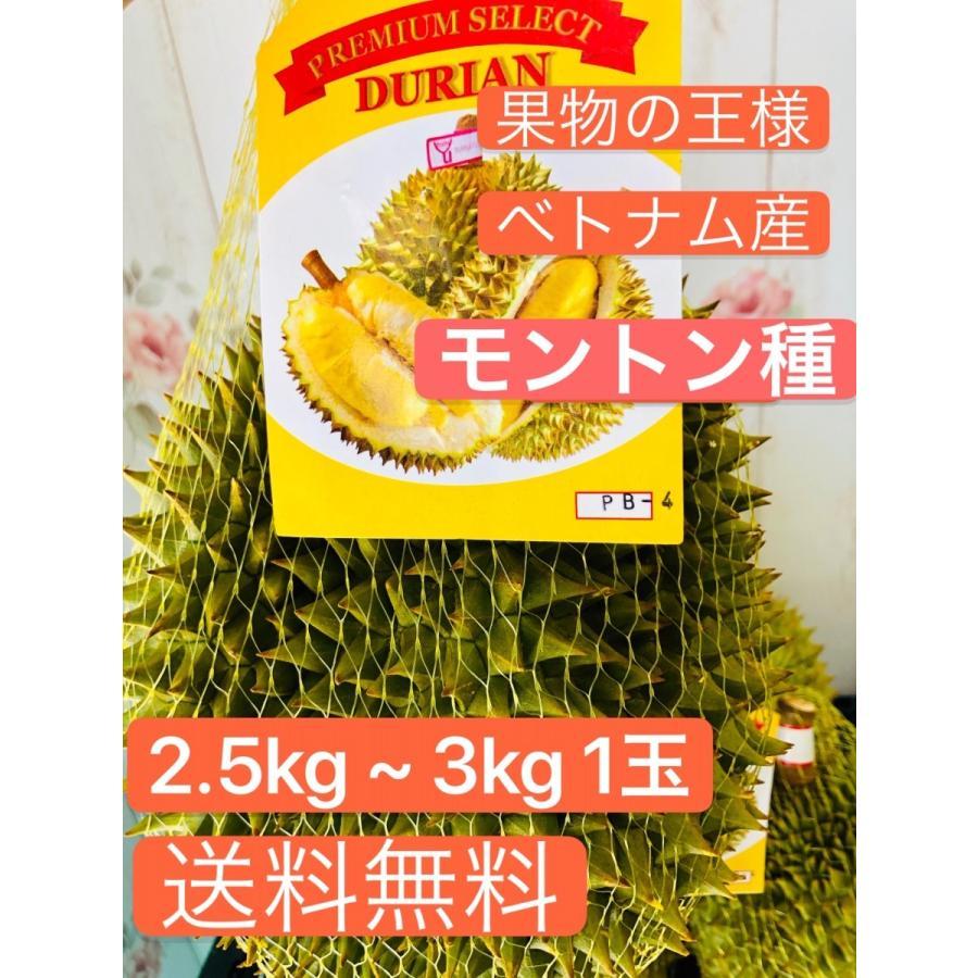 ドリアン ベトナム産 モントン種 2.5kg ~ 3kg 1玉|kukuhaha