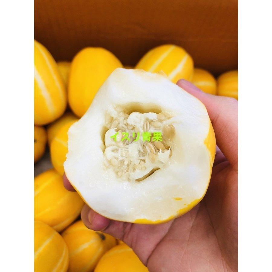 韓国チャメ 安い マクワウリ 感謝価格 5~8玉 1.5kg前後 チャメ メロン 韓国フルーツ