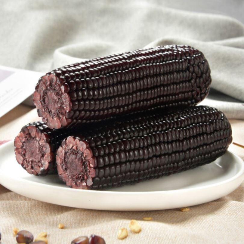 真空 黒玉米 粘玉米 1本 糯とうもろこし トウモロコシ 玉米 セール品 糯玉米 中華食品 粘苞米 中華物産 希少