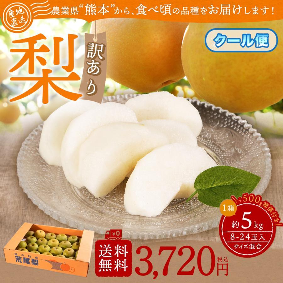 梨 マーケット 熊本産 訳あり完熟なし 海外 クール便 品種おまかせ5キロ 4キロ サイズ混合 8〜24玉 1キロ補償