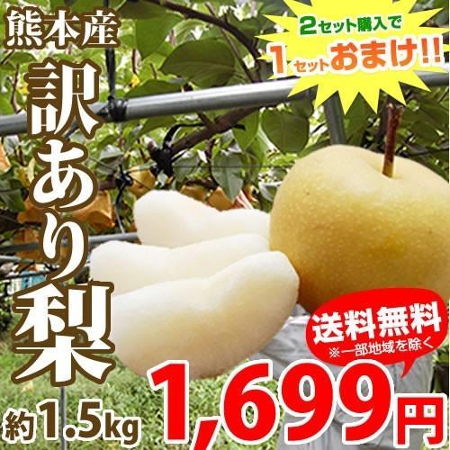 梨 送料無料 訳あり熊本県産 約1.5kg 2セット購入で1セットおまけ サイズ不選別 豊水 ついに再販開始 秋月 幸水 爆買い新作 ご自宅用 ナシ なし 新高
