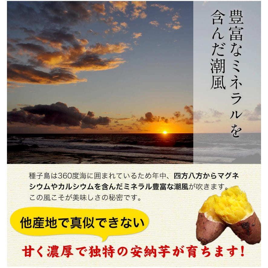 安納芋 訳あり 2kg 送料無料 2セットで1セットおまけ増量 最大 1,111円OFFクーポン付き 種子島産 芋 7-14営業日以内に出荷予定(土日祝日除く)|kumamotofood|13