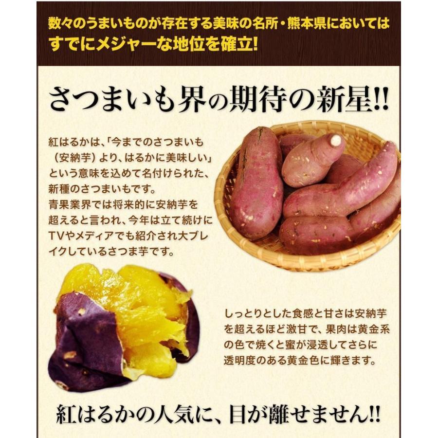 訳あり 紅はるか 1kg 熊本県産 送料無料 2セットで1セット分おまけ 大中小サイズ混合(不選別) さつまいも 3-7営業日以内に出荷予定(土日祝日除く)|kumamotofood|11