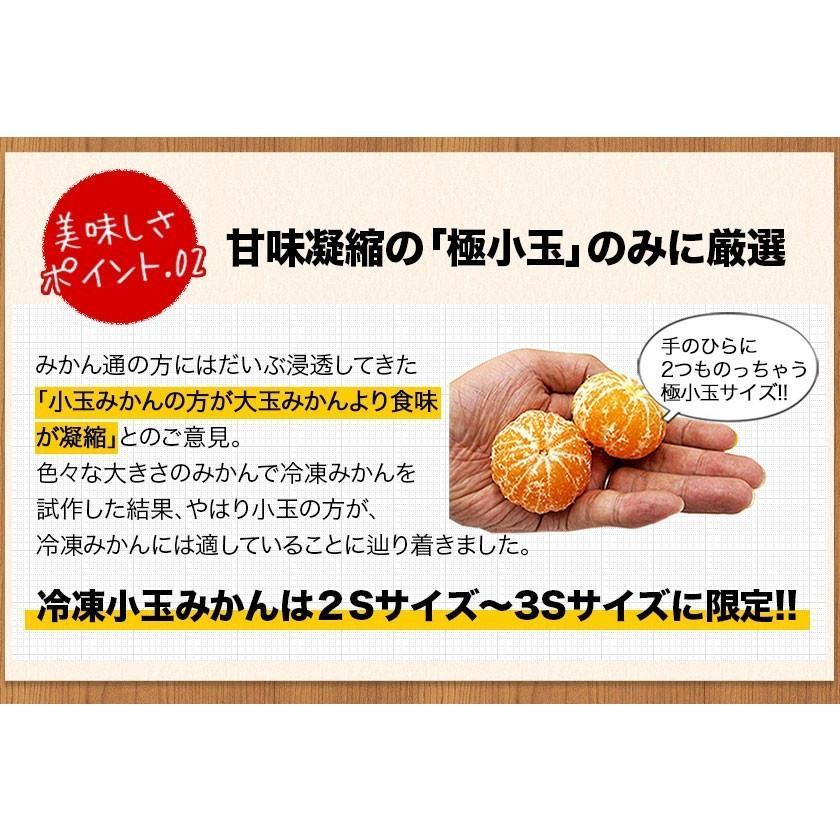 熊本県産 冷凍 小玉 みかん 皮むき 1.5kg 500g×3袋 送料無料 2s~3s 2s 3sサイズ 柑橘 2セット購入で1セットおまけ  7-14営業日以内に出荷予定 土日祝日除く|kumamotofood|12
