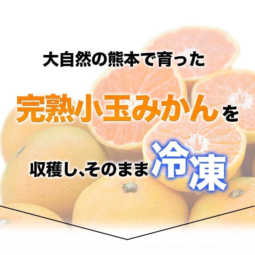 熊本県産 冷凍 小玉 みかん 皮むき 1.5kg 500g×3袋 送料無料 2s~3s 2s 3sサイズ 柑橘 2セット購入で1セットおまけ  7-14営業日以内に出荷予定 土日祝日除く|kumamotofood|16