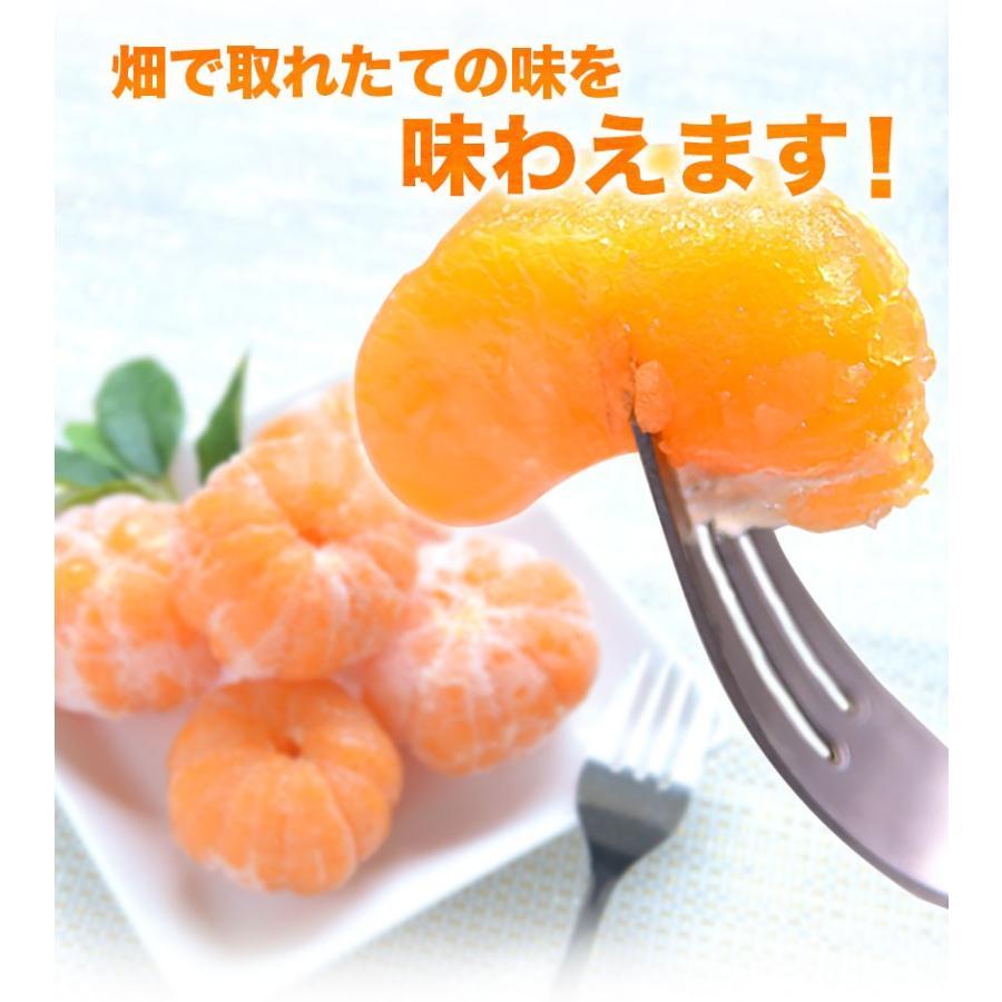 熊本県産 冷凍 小玉 みかん 皮むき 1.5kg 500g×3袋 送料無料 2s~3s 2s 3sサイズ 柑橘 2セット購入で1セットおまけ  7-14営業日以内に出荷予定 土日祝日除く|kumamotofood|17