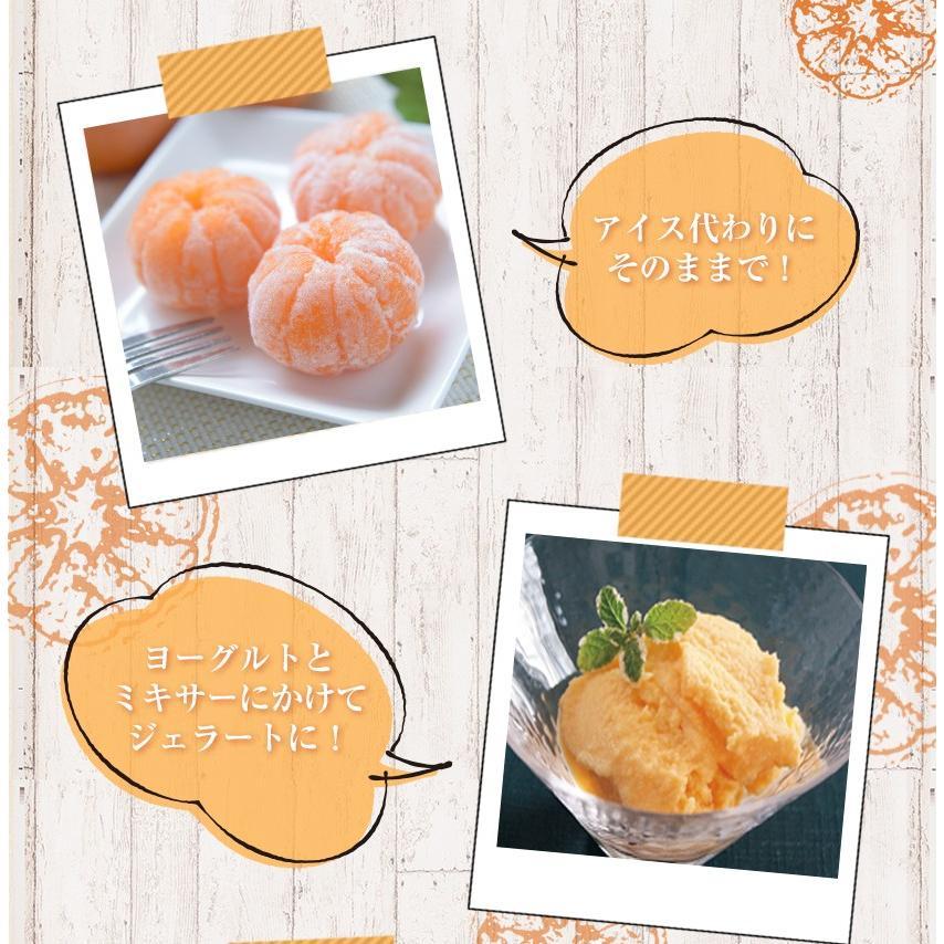 熊本県産 冷凍 小玉 みかん 皮むき 1.5kg 500g×3袋 送料無料 2s~3s 2s 3sサイズ 柑橘 2セット購入で1セットおまけ  7-14営業日以内に出荷予定 土日祝日除く|kumamotofood|19