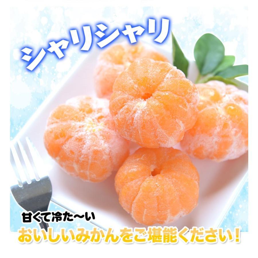 熊本県産 冷凍 小玉 みかん 皮むき 1.5kg 500g×3袋 送料無料 2s~3s 2s 3sサイズ 柑橘 2セット購入で1セットおまけ  7-14営業日以内に出荷予定 土日祝日除く|kumamotofood|21