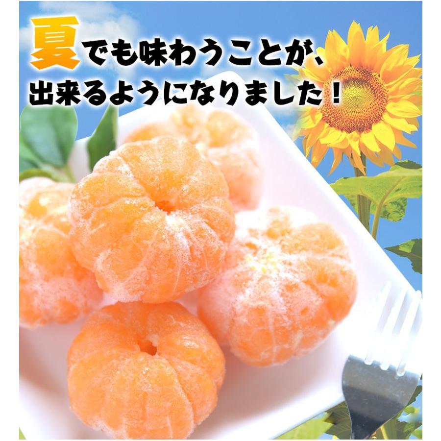 熊本県産 冷凍 小玉 みかん 皮むき 1.5kg 500g×3袋 送料無料 2s~3s 2s 3sサイズ 柑橘 2セット購入で1セットおまけ  7-14営業日以内に出荷予定 土日祝日除く|kumamotofood|06