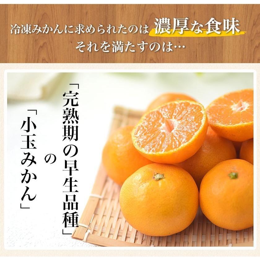 熊本県産 冷凍 小玉 みかん 皮むき 1.5kg 500g×3袋 送料無料 2s~3s 2s 3sサイズ 柑橘 2セット購入で1セットおまけ  7-14営業日以内に出荷予定 土日祝日除く|kumamotofood|07