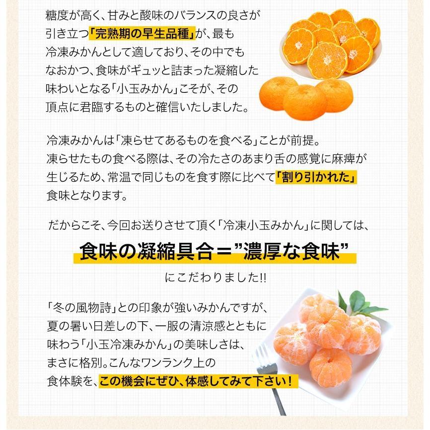 熊本県産 冷凍 小玉 みかん 皮むき 1.5kg 500g×3袋 送料無料 2s~3s 2s 3sサイズ 柑橘 2セット購入で1セットおまけ  7-14営業日以内に出荷予定 土日祝日除く|kumamotofood|09