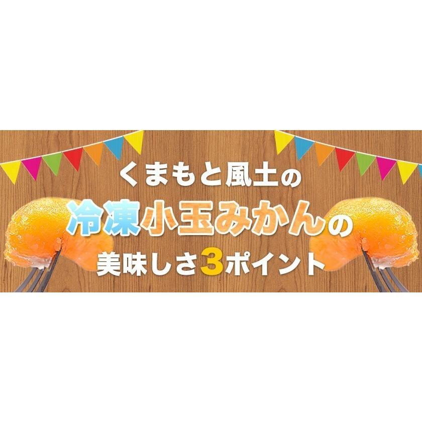 熊本県産 冷凍 小玉 みかん 皮むき 1.5kg 500g×3袋 送料無料 2s~3s 2s 3sサイズ 柑橘 2セット購入で1セットおまけ  7-14営業日以内に出荷予定 土日祝日除く|kumamotofood|10