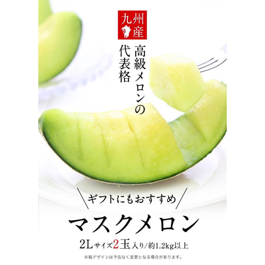 九州産 マスクメロン 2玉 秀品 送料無料 2Lサイズ 1玉約1.2kg以上×2玉7-14営業日以内に出荷予定(土日祝日除く) kumamotofood 05