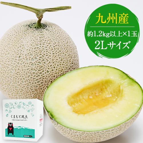 マスクメロン 秀品 1玉 2Lサイズ 約1.2kg以上 送料無料 ギフト メロン 九州産 高級メロン  7-14営業日以内に出荷予定(土日祝日除く) kumamotofood