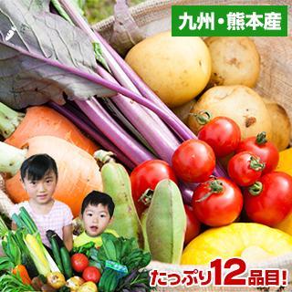 自家用 野菜セット たっぷり12品目 送料無料 熊本 九州 の安心安全 旬野菜 7-14営業日以内に出荷予定(土日祝日除く)|kumamotofood