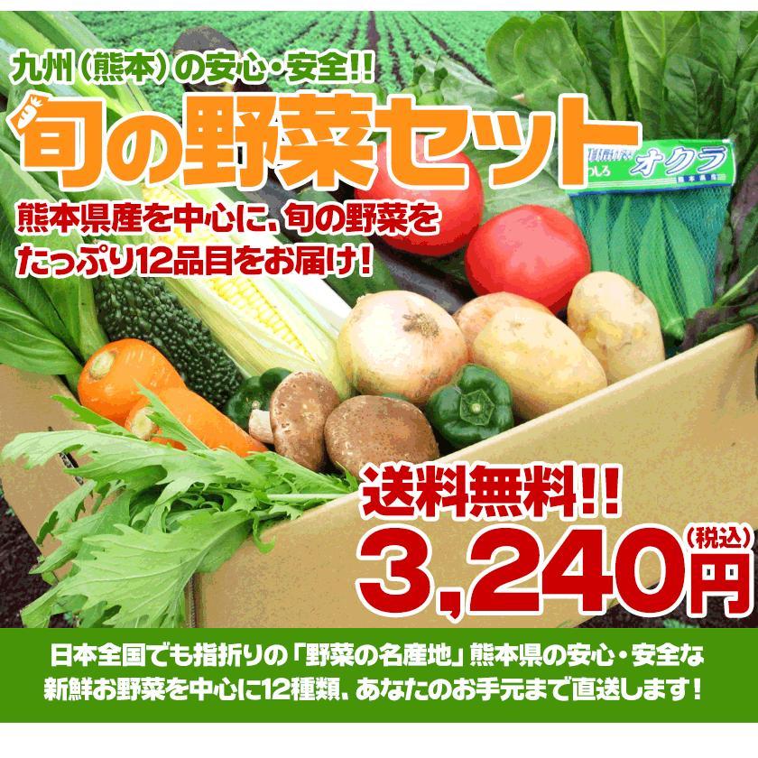 自家用 野菜セット たっぷり12品目 送料無料 熊本 九州 の安心安全 旬野菜 7-14営業日以内に出荷予定(土日祝日除く)|kumamotofood|02
