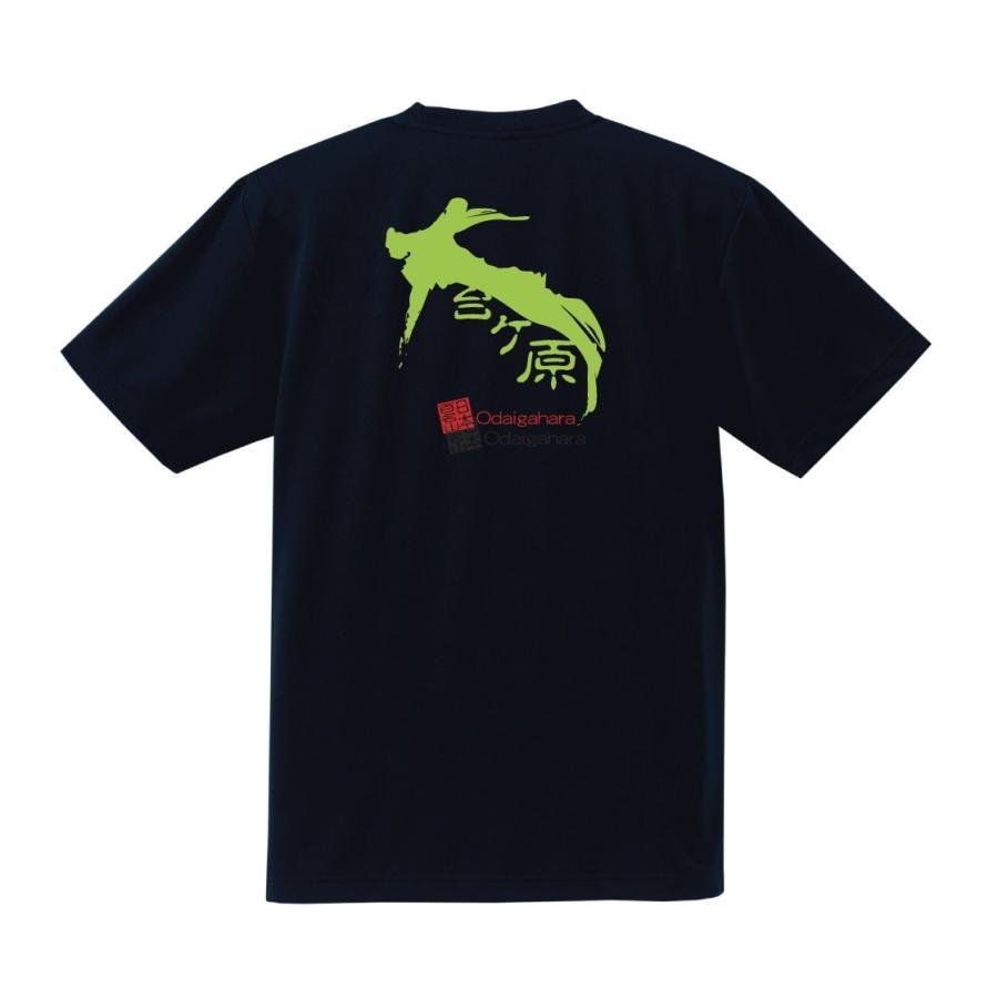 【素材変更】奈良・奥吉野≫大台ケ原 半袖 バックプリント ドライメッシュTシャツ kumano-t