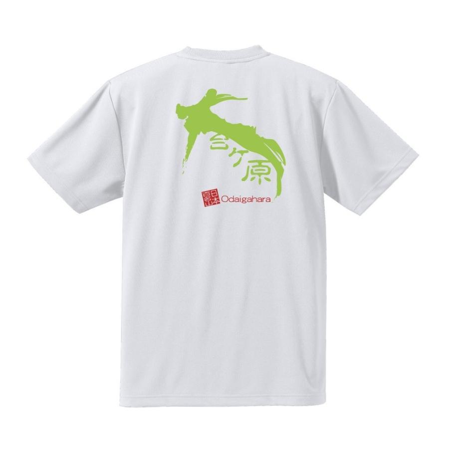 【素材変更】奈良・奥吉野≫大台ケ原 半袖 バックプリント ドライメッシュTシャツ kumano-t 02