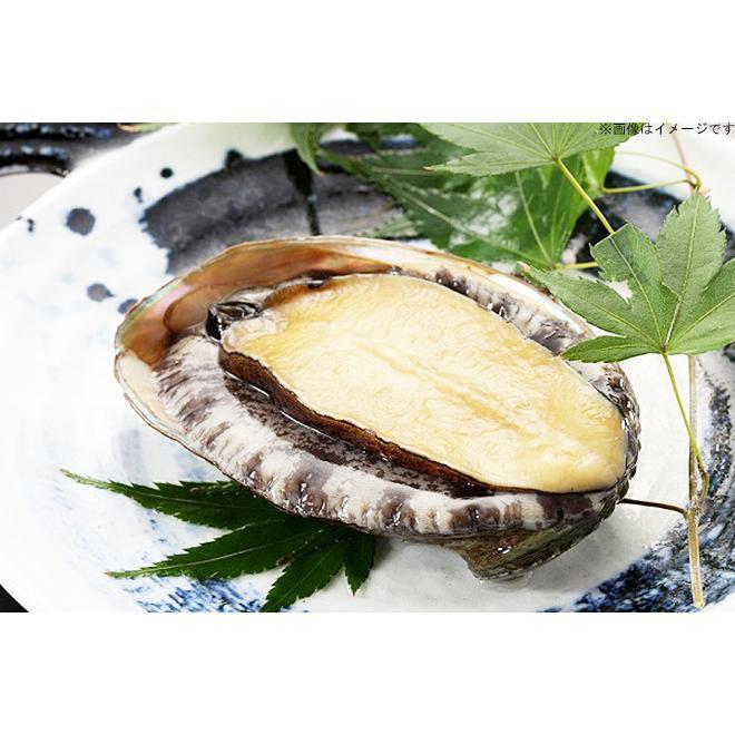 【愛知・西浦温泉】1泊2食付☆アワビなど選べる3種の豪華海鮮会席|kumapon-shop|03