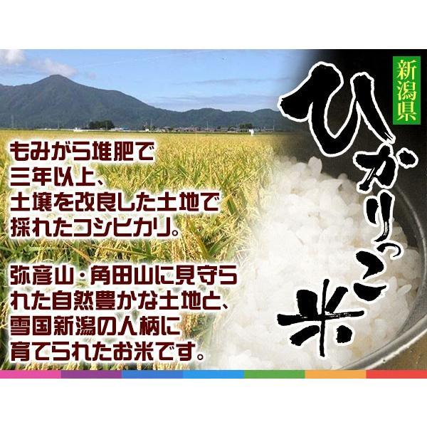 新潟ひかりっこ 新潟県産 特別栽培米 ひかりっこ米 5kg 令和2年新米 kumazou2 02