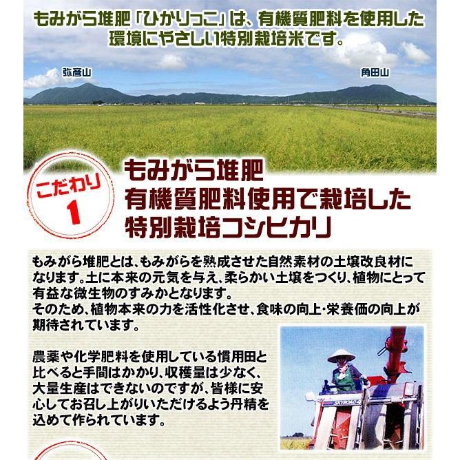 新潟ひかりっこ 新潟県産 特別栽培米 ひかりっこ米 5kg 令和2年新米 kumazou2 03