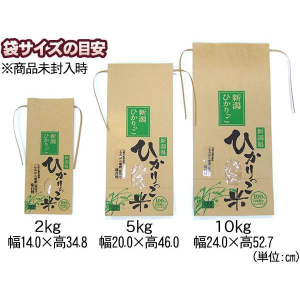新潟ひかりっこ 新潟県産 特別栽培米 ひかりっこ米 5kg 令和2年新米 kumazou2 06
