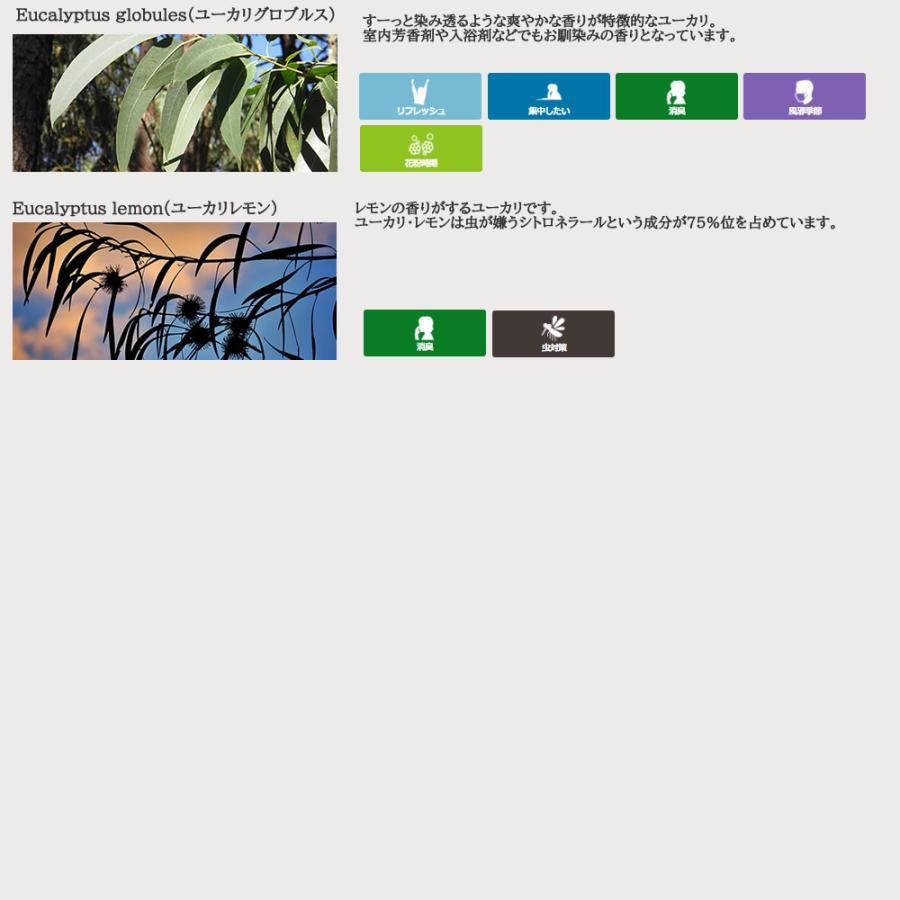 エッセンシャルオイル アロマ スターター セット 1 エッセンシャルオイル 5ml ×3本 とアロマストーン セット tg_smc - 定形外送料無料 - kumokumo-square 08