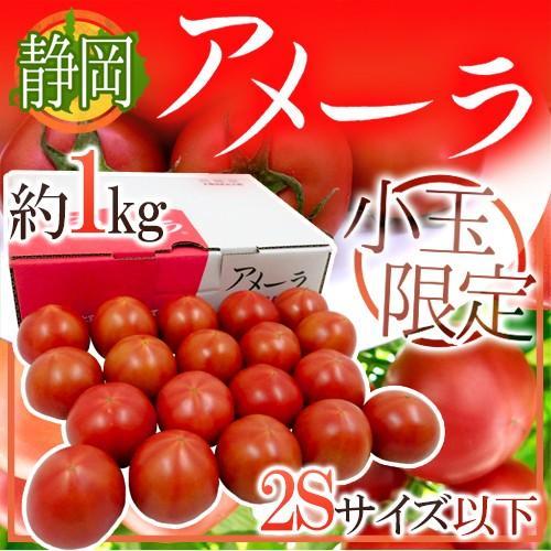 トマト嫌いも驚く!甘くておいしいトマトのおすすめはどれ?