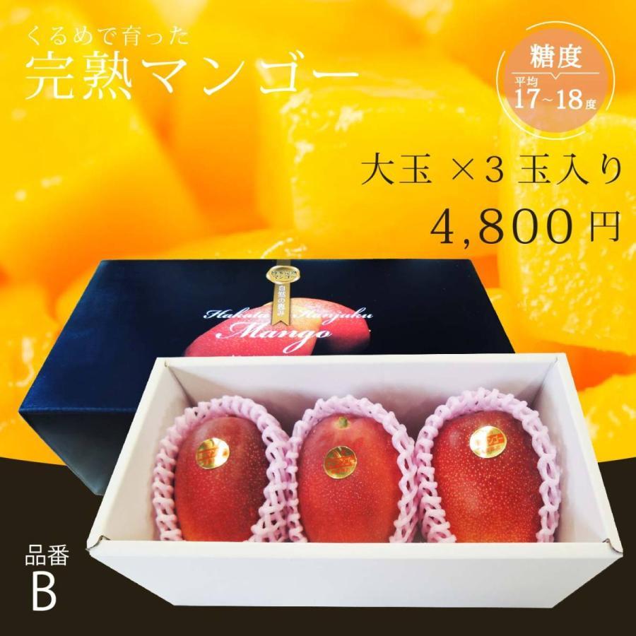 【品番B】大玉×3玉入り くるめで育った完熟マンゴー kurashige-nouen