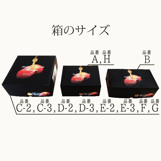 【品番B】大玉×3玉入り くるめで育った完熟マンゴー kurashige-nouen 06