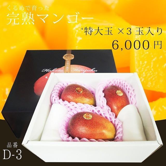 【品番D-3】'特大玉×3玉入り くるめで育った完熟マンゴー kurashige-nouen