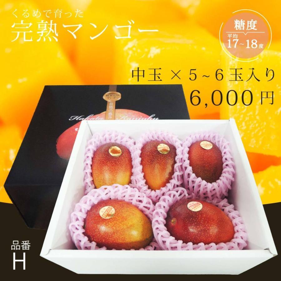 【品番H】中玉×5〜6玉入り くるめで育った完熟マンゴー|kurashige-nouen