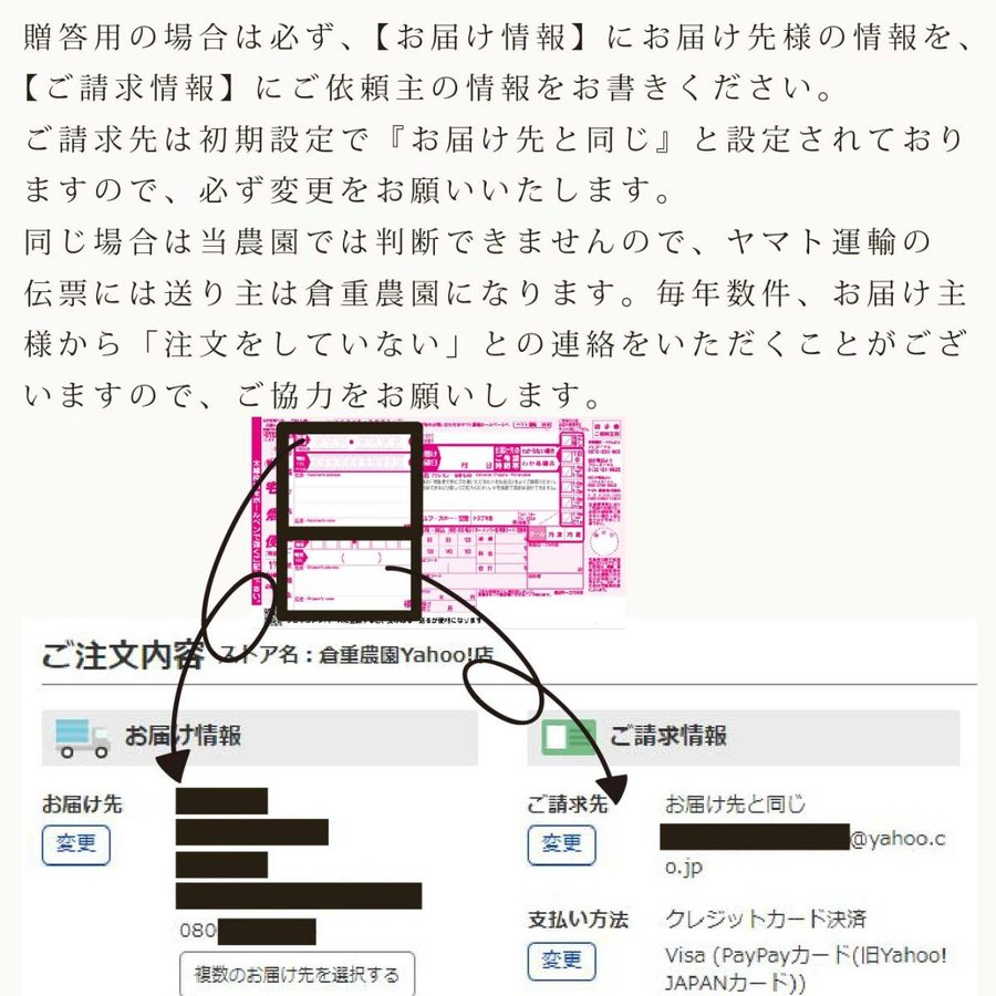 【品番H】中玉×5〜6玉入り くるめで育った完熟マンゴー|kurashige-nouen|03
